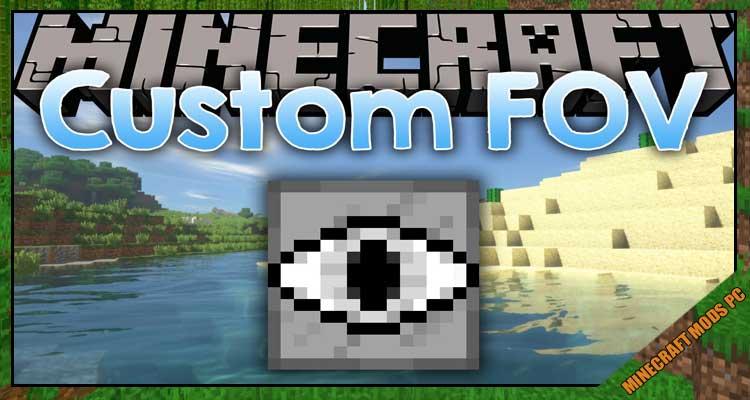 Custom FoV