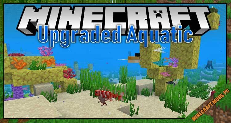 Upgrade Aquatic